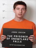 The Prisoner of Snowflake Falls