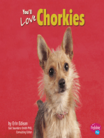 You'll Love Chorkies