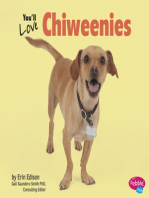 You'll Love Chiweenies