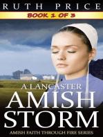 A Lancaster Amish Storm - Book 1