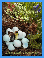 The Extraordinary Eggs