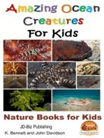 Amazing Ocean Creatures For Kids