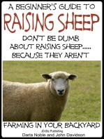 A Beginner's Guide to Raising Sheep