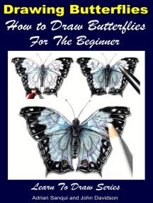 Drawing Butterflies: How to Draw Butterflies For the Beginner