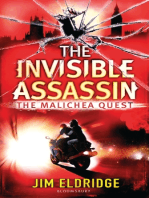 The Invisible Assassin