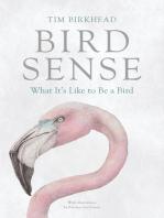 Bird Sense
