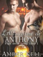 L'Attrazione di Anthony
