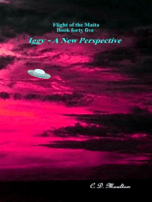 Flight of the Maita Book 45: Iggy - A New Perspective