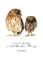 Little Birds with Broken Wings