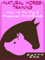 Natural Horse Training