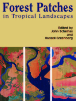 Forest Patches in Tropical Landscapes