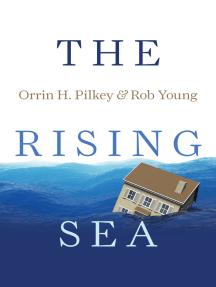 The Rising Sea