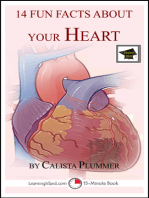 14 Fun Facts About Your Heart