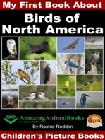 My First Book about Birds of North America