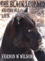The Black Leopard and Other Wild Life