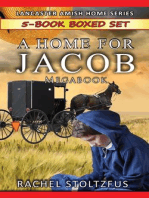 A Lancaster Home for Jacob 5-Book Boxed Set Bundle