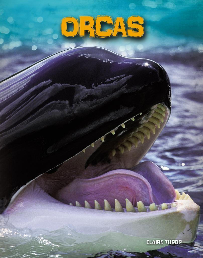 Orcasonline