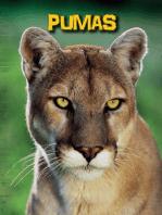 Pumas