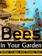 Bees in Your Garden