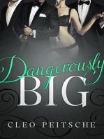 Dangerously Big (Executive Toy, #3)