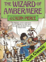 The Wizard of Ambermere