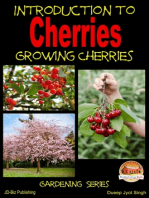 Introduction to Cherries