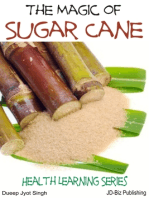 The Magic of Sugar Cane