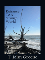 Entrance To A Strange World