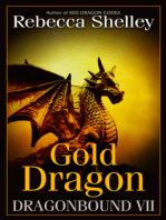 Dragonbound VII
