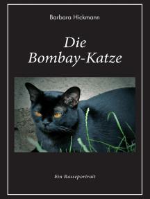 Die Bombay-Katze: Ein Rasseportrait