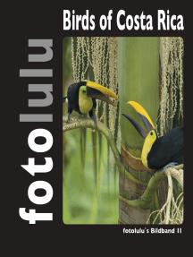 Birds of Costa Rica: fotolulu's Bildband 2