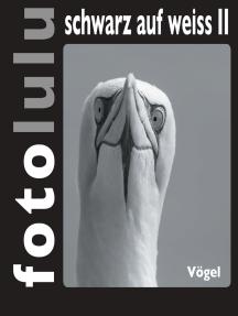 fotolulu schwarz auf weiss II: Vögel
