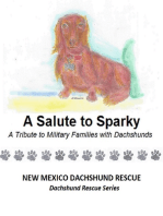A Salute to Sparky