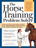 The Horse Training Problem Solver