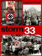 Storm 33