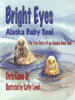 Bright Eyes, Alaska Baby Seal