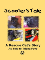 Scooter's Tale