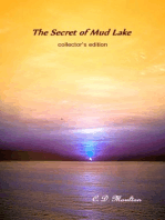 The Secret of Mud Lake