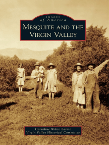 Mesquite and the Virgin Valley