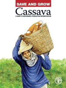 Save and Grow: Cassava
