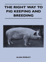 The Right Way to Pig Keeping and Breeding