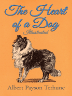 The Heart of a Dog - Illustrated