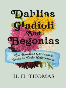 Dahlias, Gladioli and Begonias - The Amateur Gardener's Guide to Their Cultivation