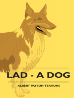 Lad - A Dog