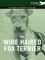 The Wire Haired Fox Terrier - A Complete Anthology of the Dog