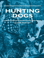 Hunting Dogs - Describes In A Practical Manner The Training, Handling, Treatment, Breeds, Etc., Best Adapted For Night Hunting As Well As Gun Dogs For Daylight Sport