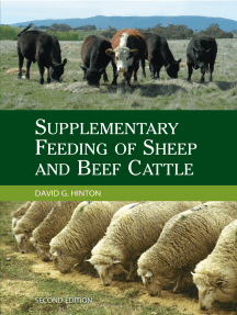Supplementary Feeding of Sheep and Beef Cattle