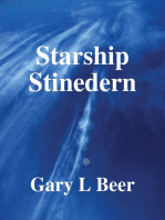 Starship Stinedern