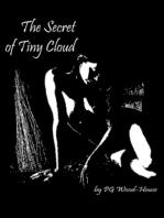 The Secret of Tiny Cloud