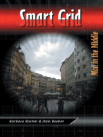 Smart Grid: Man In the Middle